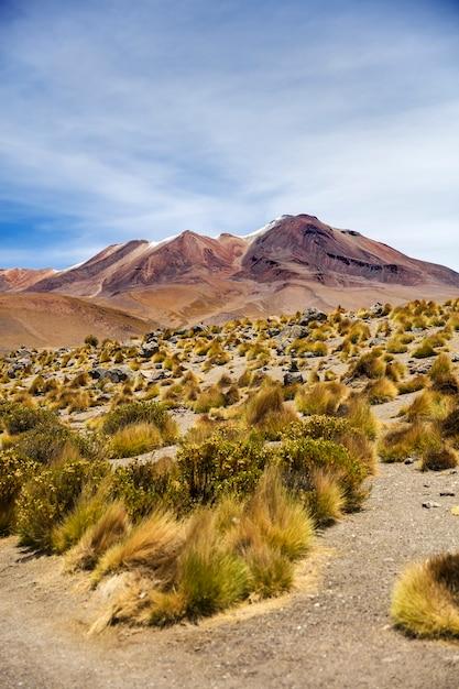 ボリビアのラグーナコロラダ Premium写真