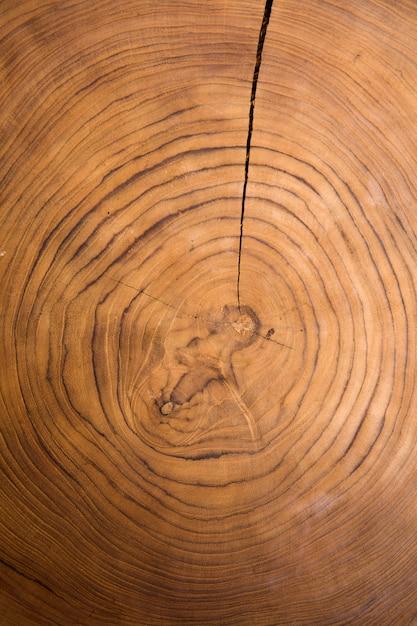 木製の大きな円形部分の断面の背景 Premium写真