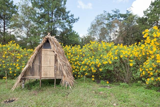芝生の上の小屋 Premium写真