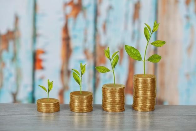 コインスタック、投資成長の概念上に成長している木。 Premium写真