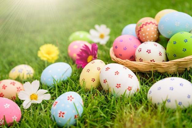 С пасхой! красочные пасхальные яйца в гнезде на поле зеленой травы во время заката Premium Фотографии