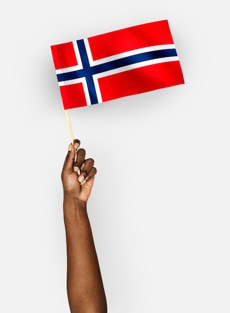 ノルウェー王国の旗を振る人 無料写真