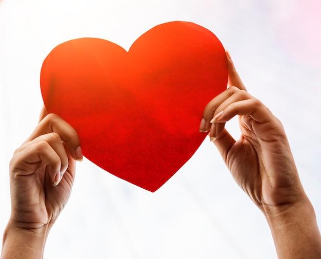 紙の心臓を保持している手の拡大 無料写真