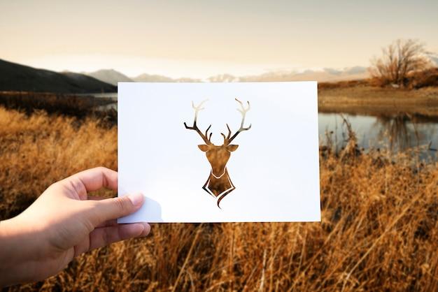 野生の生命動物の穿孔紙ムース 無料写真