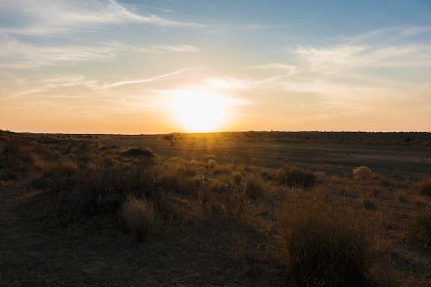 ラージャスターン州のタール砂漠 無料写真