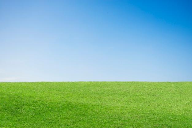 緑の丘 無料写真