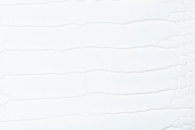 ホワイトレザーの背景 無料写真