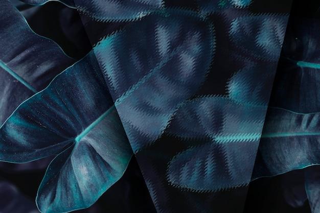 青い熱帯の葉の背景 無料写真