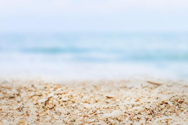ビーチ製品の背景 無料写真