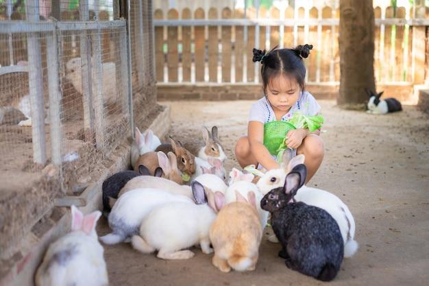 Кролик милой маленькой азиатской девушки подавая на ферме Premium Фотографии