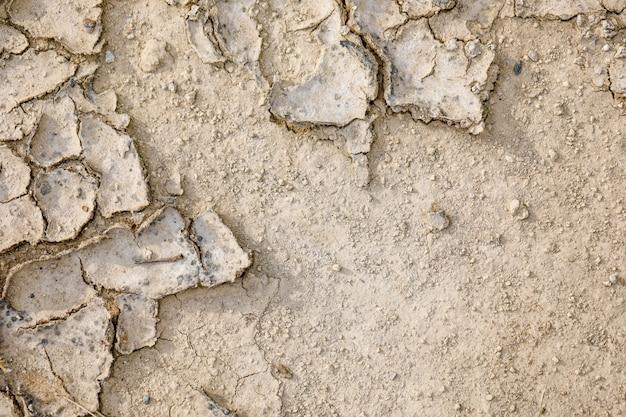 乾燥した、割れた土の屋根のテクスチャ Premium写真