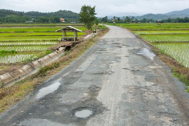 Поврежденная дорога на селе с рисовым полем Premium Фотографии