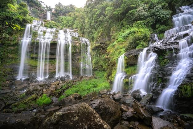 森の中の滝 Premium写真