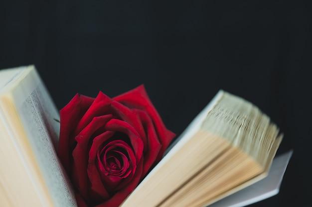 赤いバラホワイトブック、コンセプト、バレンタインデーのテーマに配置 Premium写真
