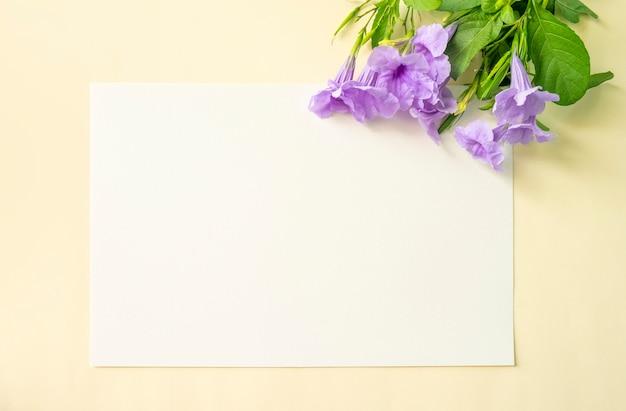 白と柔らかい黄色の背景に紫の花 Premium写真