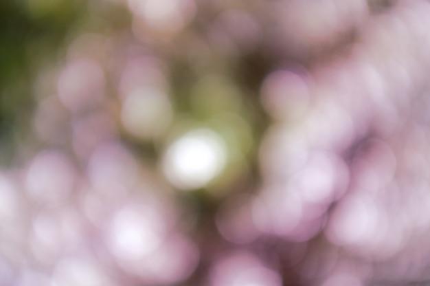 自然なボケテクスチャと多重輝くライトとカラフルな背景 Premium写真