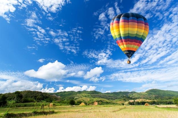 青い空とフィールド上の熱気球 Premium写真