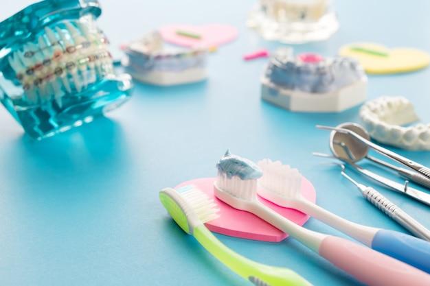 歯科矯正ブラケットやブレースの品種のデモ歯モデル Premium写真