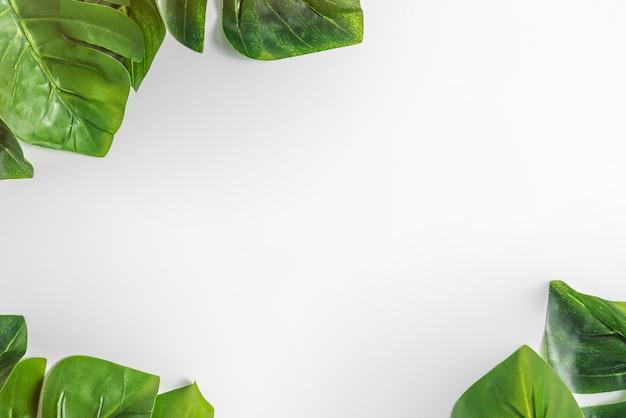白い紙と緑の葉 Premium写真