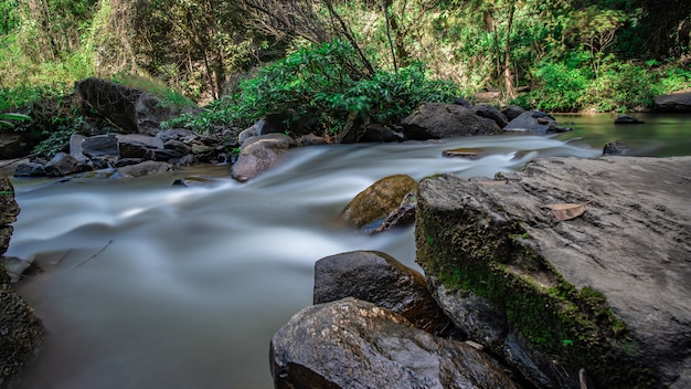 穏やかなクリークの滝 Premium写真