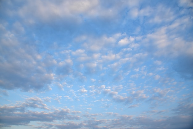 青い空の壁 Premium写真