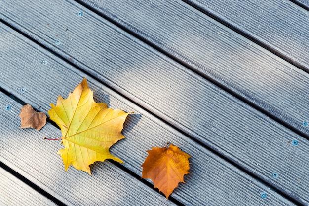 木製の背景に黄色と茶色の葉 Premium写真