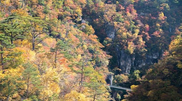 鳴子峡宮城東北日本 Premium写真