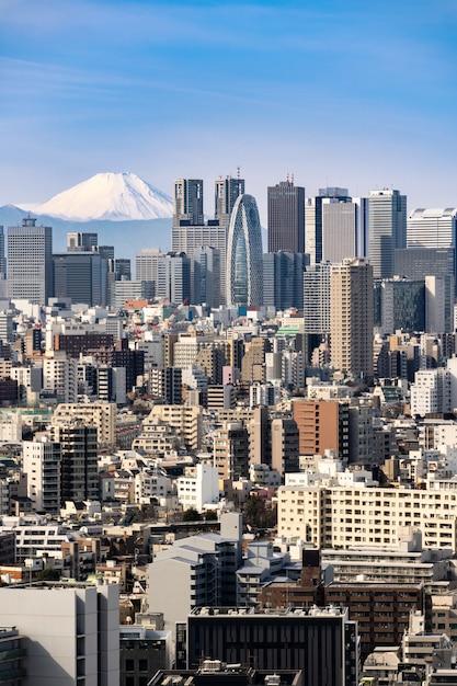 東京のスカイラインと日本の山富士。 Premium写真
