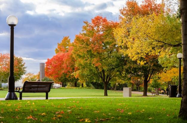 カナダ、オタワのメジャーズヒルパークの秋のメープルカラー Premium写真