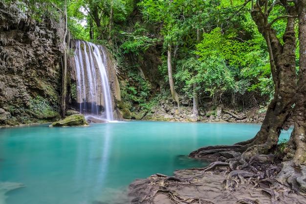 美しい深い森の滝 Premium写真