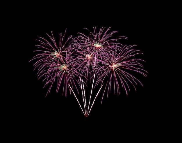 黒に分離されたピンクの爆発花火 Premium写真