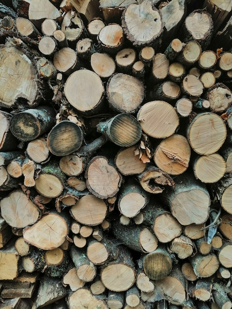 木製の丸太の背景 無料写真