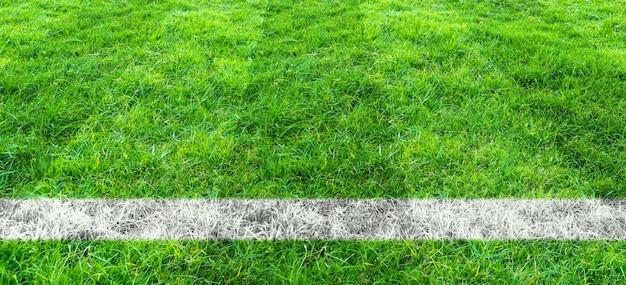 サッカー場の緑の芝生でサッカーライン。スポーツの背景のための緑の芝生フィールドパターン。 Premium写真