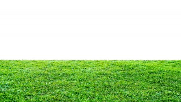 Поле зеленой травы Premium Фотографии