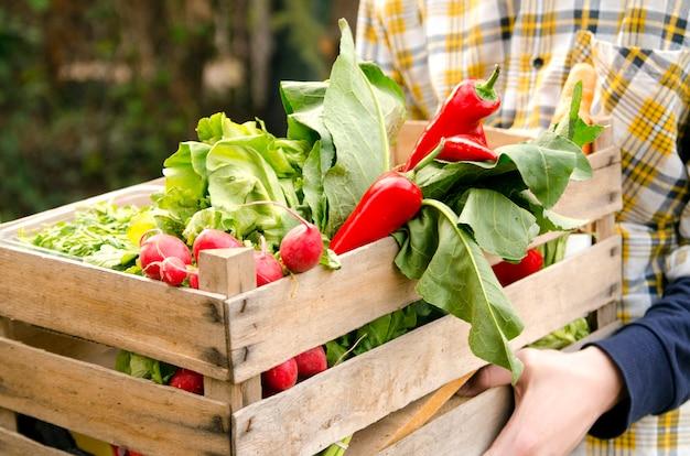 Человек, держащий ящик свежих овощей и дать женщине руки. Premium Фотографии