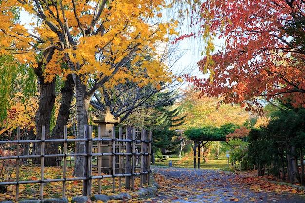 Осенний пейзаж в парке накадзима, город саппоро, япония. Premium Фотографии