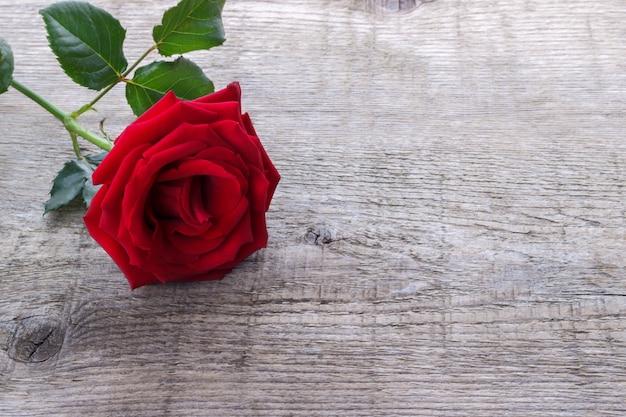 素朴な木製の背景に赤いバラ Premium写真