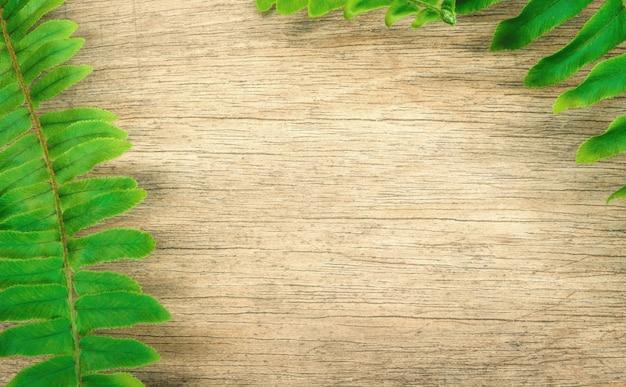 ファーンは木製の背景に葉。 Premium写真