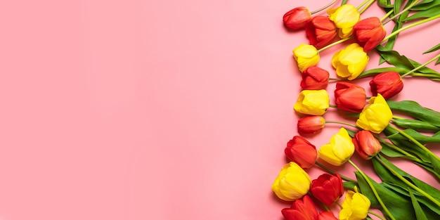 ピンクの背景の色のチューリップ。フラット横たわっていた、上面図。バレンタインの背景。 Premium写真