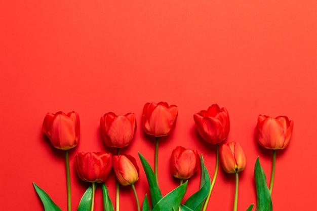 コピースペースと赤の背景に赤いチューリップの花束。 Premium写真