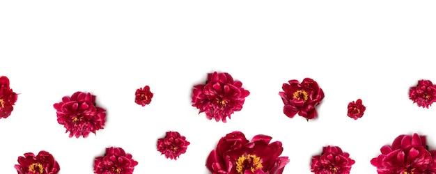 白地に赤い牡丹の花の花柄 Premium写真