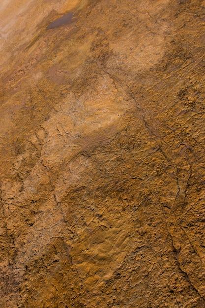 石の上の恐竜の足跡 Premium写真