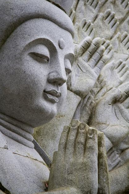 Закройте вверх по взгляду красивой статуи будды на парке. Premium Фотографии