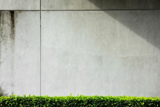 建物からの影と灰色のコンクリートの壁 Premium写真