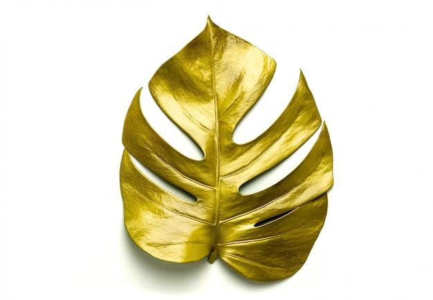 黄金の葉、白で隔離 Premium写真