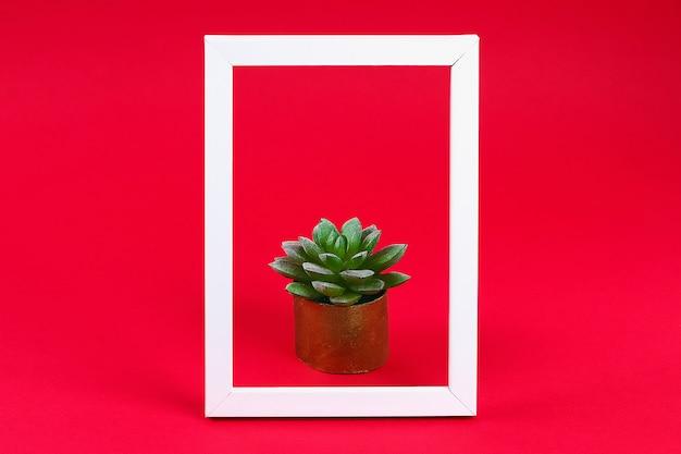 赤いバーガンディの白いフレームに金色のポットトイレットスリーブに緑の多肉植物。 Premium写真