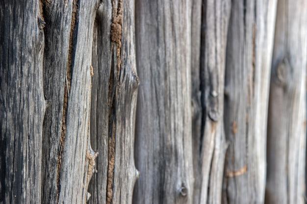 黒のシロアリと古い木材防御 Premium写真