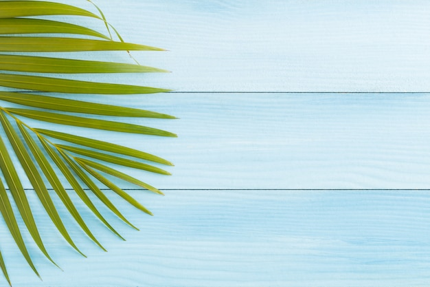 Плоские лежал кокосовые листья на синем деревянном полу, вид сверху и копией пространства, летняя концепция Premium Фотографии