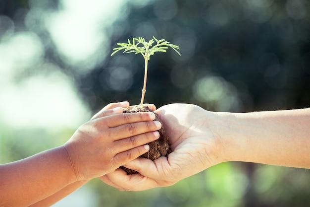 Ребенка девочка и родитель, проведение молодых растений в руках вместе Premium Фотографии