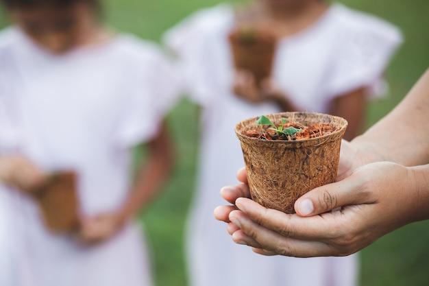 庭に植えるためのリサイクル繊維ポットに若い苗を保持している女性の手 Premium写真